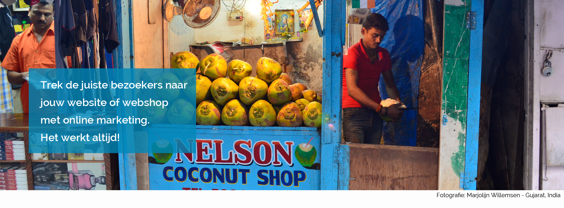 Online-marketing-coconutshop